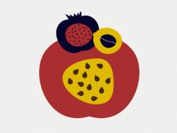 1 Spicchi e schizzi frutta